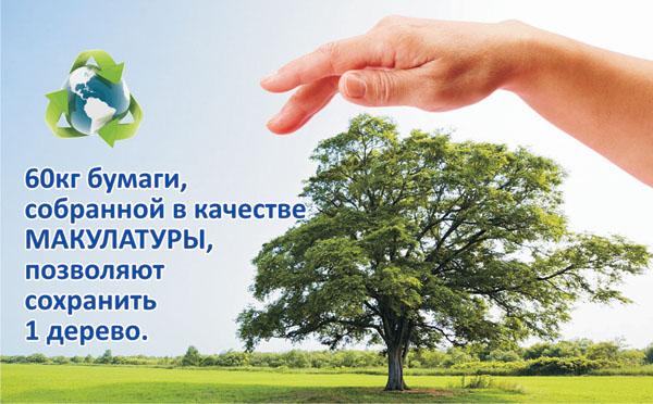 Детские картинки на тему макулатура макулатура пункты приема в новосибирске